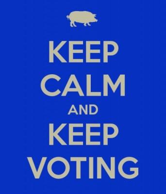 keep-calm-and-keep-voting