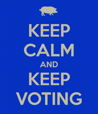 keep-calm-and-keep-voting-5